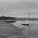 Low tide by James  Kerr