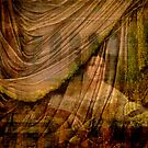 The Woman Behind the Curtain by Sarah Vernon