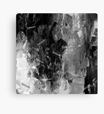BLACK AND WHITE SPLASH! Canvas Print