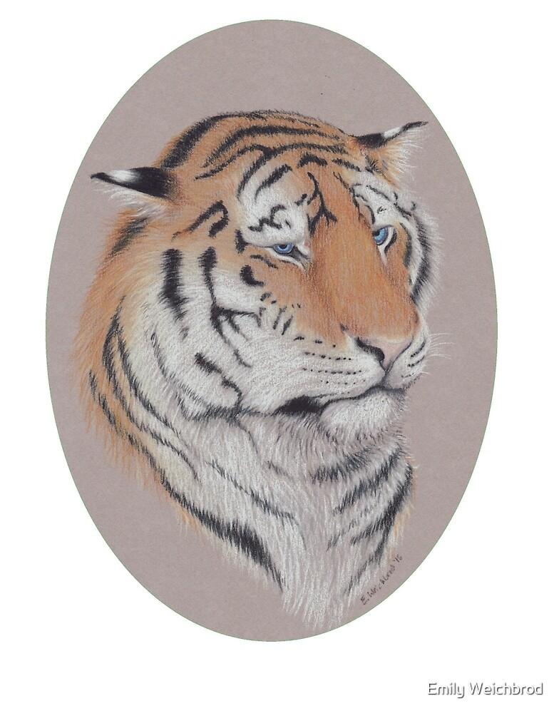 Unimpressed - Blue Eyed Tiger by Emily Weichbrod