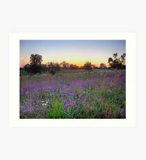 Countryside Color Art Print