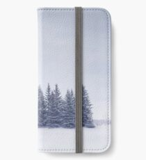 Winterscape iPhone Wallet/Case/Skin