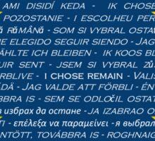 I CHOSE REMAIN - EU DESIGN  Sticker