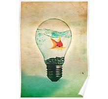 Fish Bulb Poster