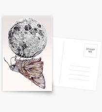 In which a moth is enticed by the light of the moon Postcards