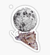 In which a moth is enticed by the light of the moon Sticker