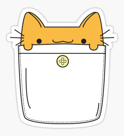 Pocket Cat - Orange Sticker