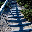 Rottnest Island 2 by Jack Bridges