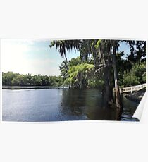 Suwannee River Hinton Landing, at the mouth Poster