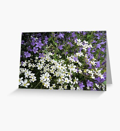 Lilac & White Floral Greeting Card