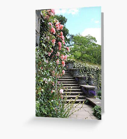 Wonderfully Welsh Floral Steps Greeting Card