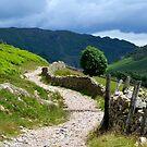 A Walk in Langdale by mikebov