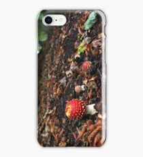 Fly agaric toadstool in beech woodland iPhone Case/Skin