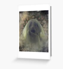 Afterlife IMG.5 Greeting Card