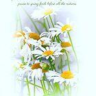 Jesaja 61, 11 mit Gänseblümchen von debbienobile