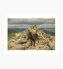 Tarn On Wetherlam Art Print