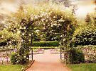 Rose Gated Garden by Jessica Jenney