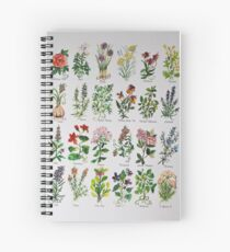 Notebooks & Journals   Stationery   John Lewis & Partners