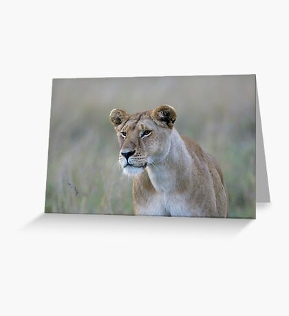 Lionness Greeting Card