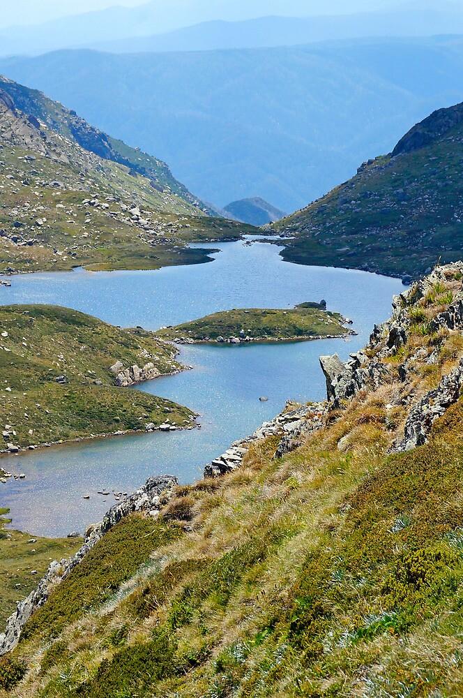 Lake Albina II by Harry Oldmeadow