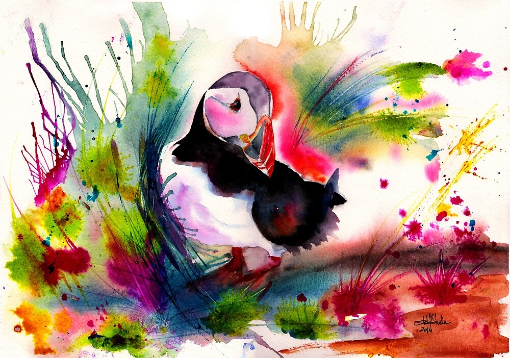 Puffin by IsabelSalvador
