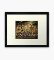 Not Every Tree Survives Framed Print