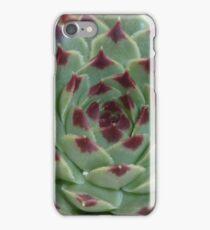 Sempervivum Cultivar iPhone Case/Skin