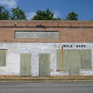 Jakes Mule Barn, Ace Ball Speaking by WildestArt