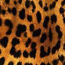 Cheetah fur by sermi