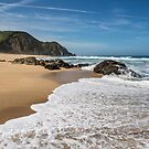 Gray Whale Cove State Beach by James Watkins