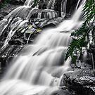 Leura cascades selective colour by Delightfuldave