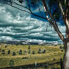 Storm Approaches by Kim Austin