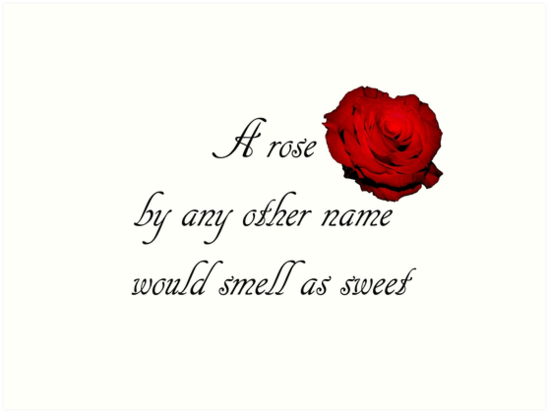 Romeo And Juliet Rose Is, RomeoAndJulietRoseQuote, Romeo And Juliet Rose Is