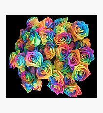 ROSES, ROSE, Rainbow, Bunch, Flowers, Colour, Colourful Photographic Print