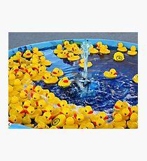 Little Duckies Photographic Print