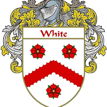 White Coat of Arms / White Family Crest by IrishArms