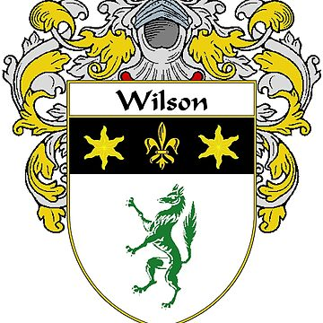 Wilson Coat of Arms / Wilson Family Crest by IrishArms