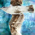 Möwe mit Aquarell Hintergrund von Peggy Collins