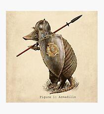 Armadillo Photographic Print