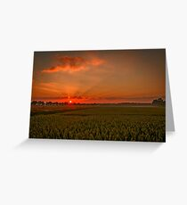 A lovely sunset landscape over Dusseldorf, Germany  Greeting Card