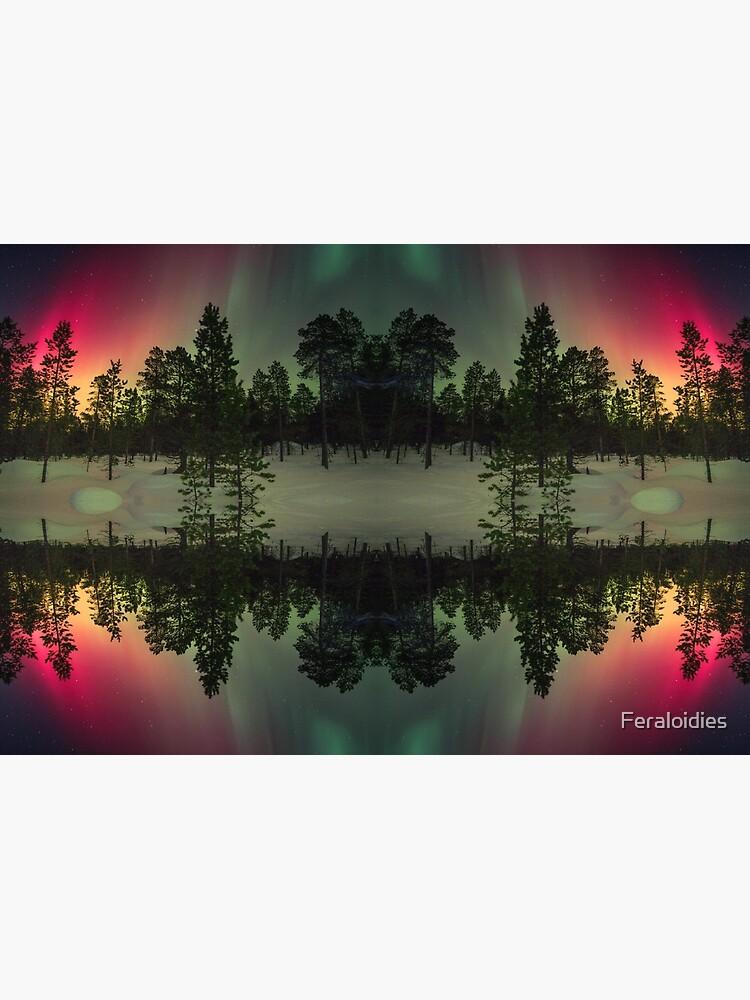 Streifen von Nordlichtern von Feraloidies