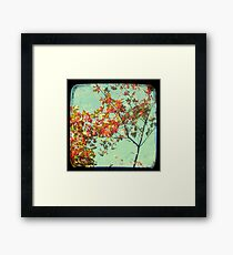 Look Up and Back Framed Print