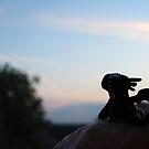 «Tiny Toothless viendo la puesta de sol.» de jennisney