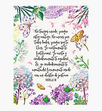 Isaias 41:10 (Flowers and Butterflies) Photographic Print