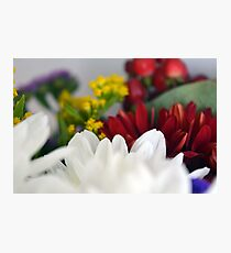 Macro on colorful flower petals. Photographic Print