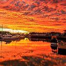 Best EVER Sunrise - Cleveland Qld Australia by Beth  Wode
