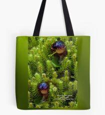 Corybas diemenicus Veined helmet-orchid bag Tote Bag