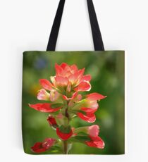 Painted With Light Tote Bag