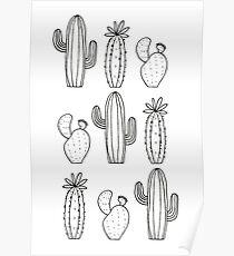 Cactus Pattern Poster
