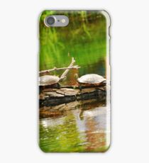 Turtles iPhone Case/Skin
